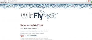 Wildfly_Browser