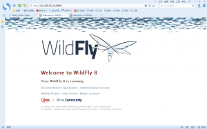 wildfly_8080